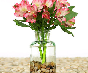 flowers, jar, and pebbles image