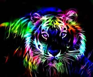 color and tiger image