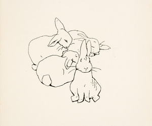rabbit, bunny, and illustration image