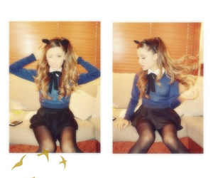 cat, ears, and flawless image