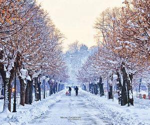 snow, winter, and mihaild7k image