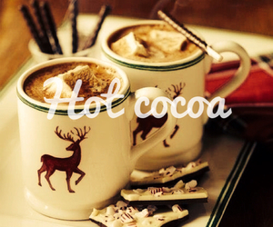 winter, cocoa, and christmas image