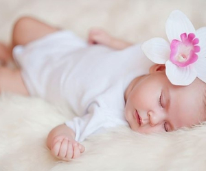 baby, flowers, and rose image