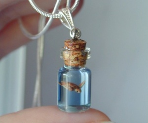turtle, necklace, and bottle image