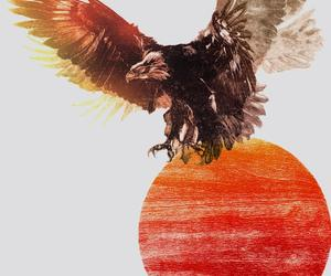 eagle, fire, and snow patrol image