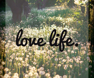 life, love, and flowers image