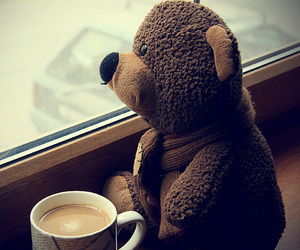 bear, beautiful, and cold image