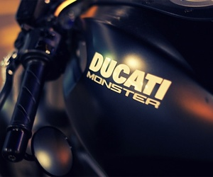 ducati, monster, and motorbike image