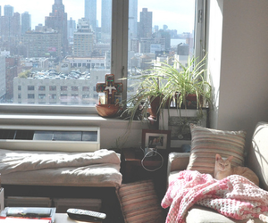 room, city, and cat image