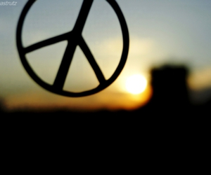 beautiful, nature, and peace image