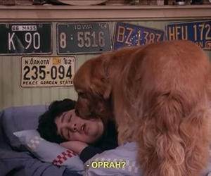 oprah, drake and josh, and dog image