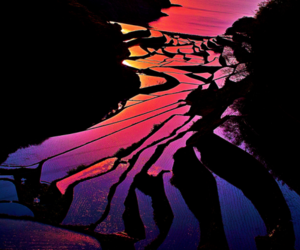 china, sunset, and great rice terraces image