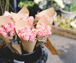 happiness, pink roses, and love image