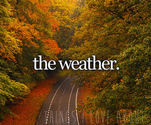 fall, autumn, and weather image