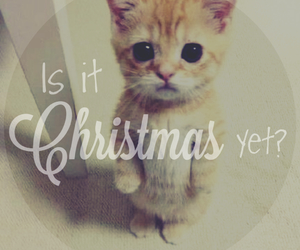 winter, cute, and christmas image