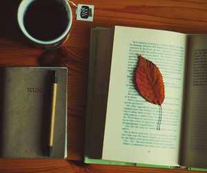 book, tea, and leaves image