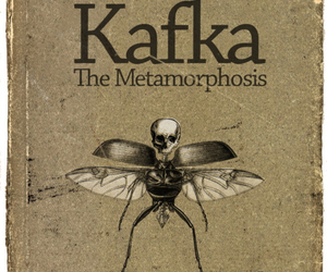 book, kafka, and Metamorphosis image