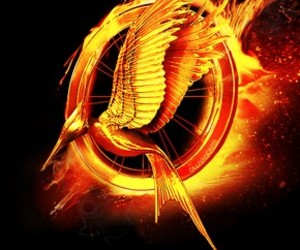 catching fire and hunger games image