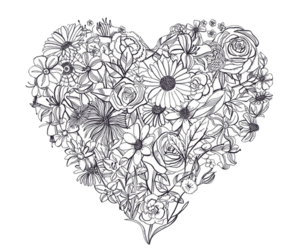 flowers, heart, and drawing image