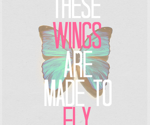 quotes, tumblr, and wings image