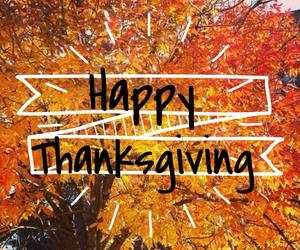 happy, thanksgiving, and orange image