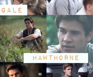 hunger games, gale, and catching fire image