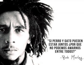 58 Images About Bob Marley On We Heart It See More About