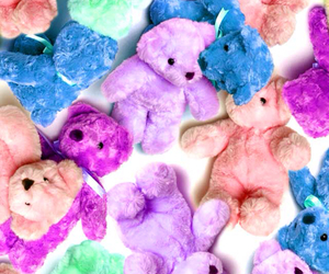 animals, bear, and kawaii image