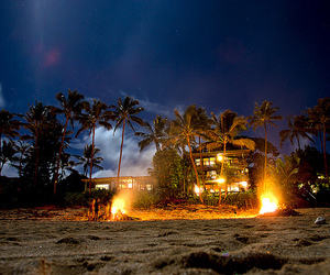 beach and fire image