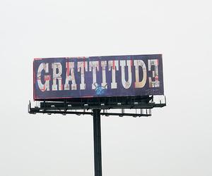 gratitude and terry richardson image