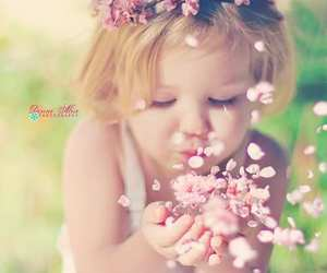 flowers, photography, and cute image
