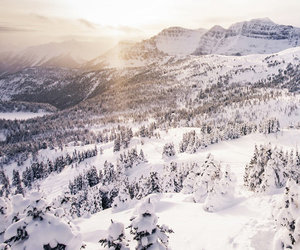 snow, winter, and beautiful image