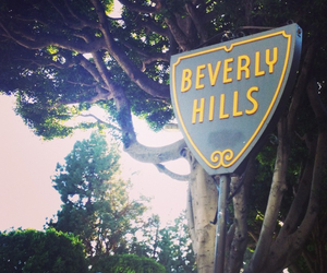 hills, love, and hollywood image