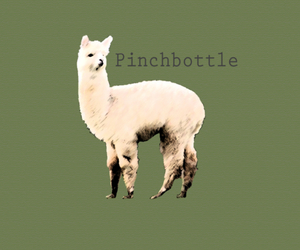 alpaca, green, and band image