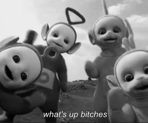 bitch, teletubbies, and funny image