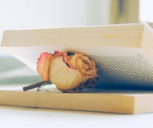 book, time, and flowers image