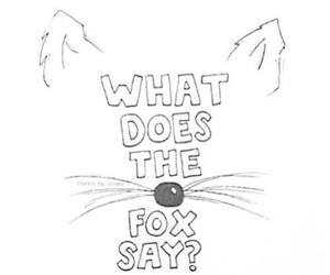 fox, funny, and say image