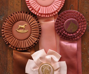 horses, pink, and prize image