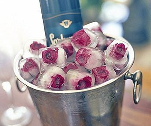 rose, ice, and champagne image