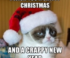 cat, cristmas, and grumpy cat image