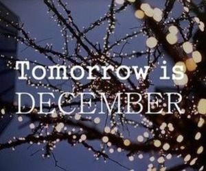 love, december, and quotes image