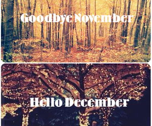 december, hello, and november image