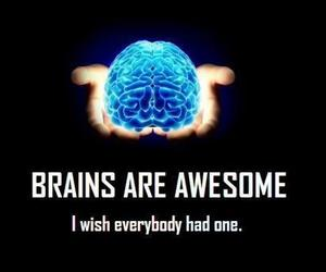 brain, awesome, and funny image