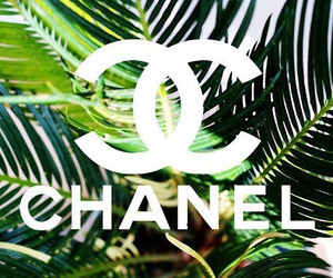 chanel, summer, and green image