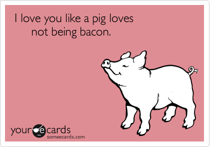 I Love You Like A Pig Loves Not Being Bacon Flirting Ecard