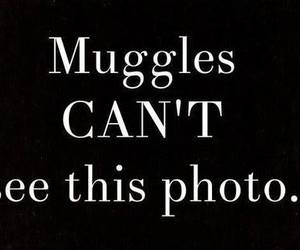 muggles and harry potter image