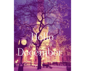 beaut, christmas, and december image