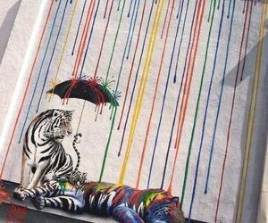 art, colors, and tiger image