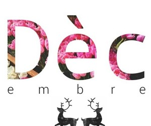 christmas, deer, and typograph image