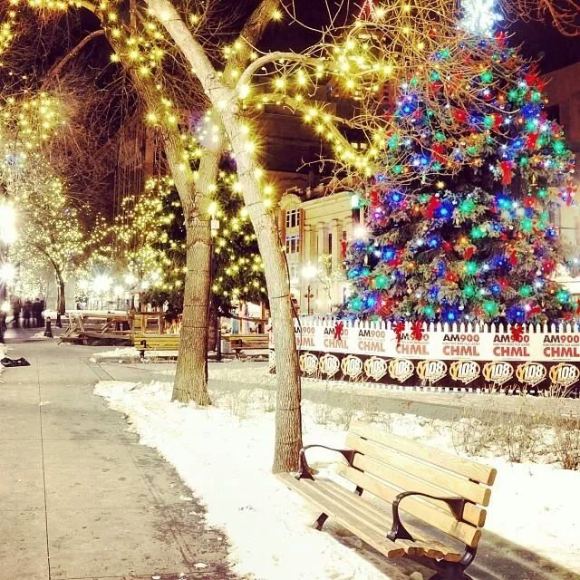 136 Images About Xmas Time On We Heart It